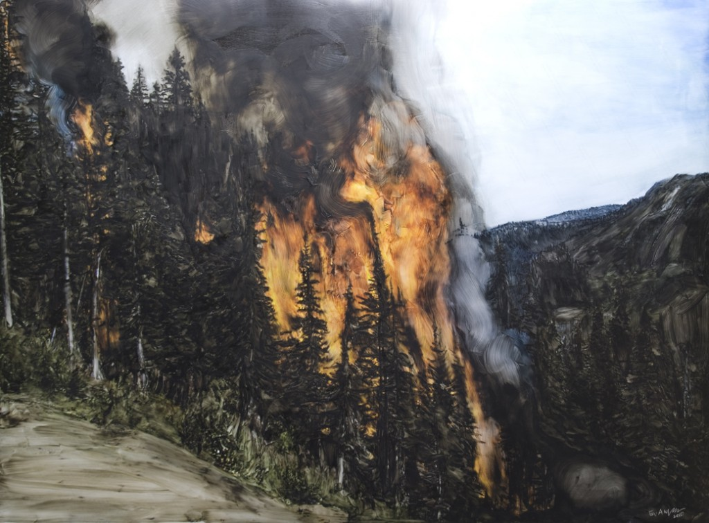 Evan Lee, Forest Fires (2009-10)