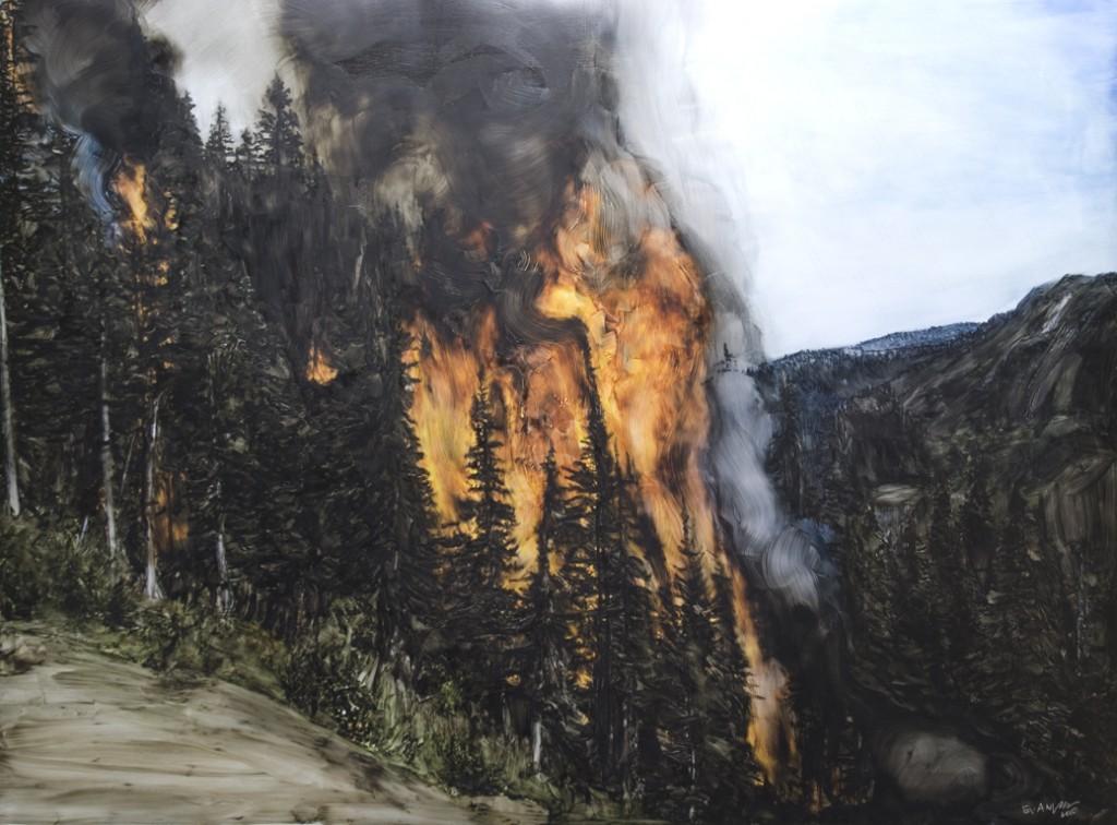 Evan Lee, Forest Fires (2009-10)